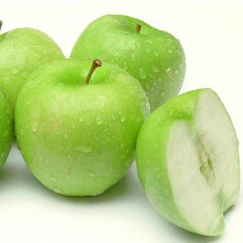 """Ovocné stromy - Jabloň """"Grany Smith"""" zimná"""