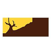 Drobné ovocie - Jahoda ´Toscana´ stálorodiaca